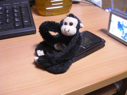CASIO EX-Z1080で撮影した猿