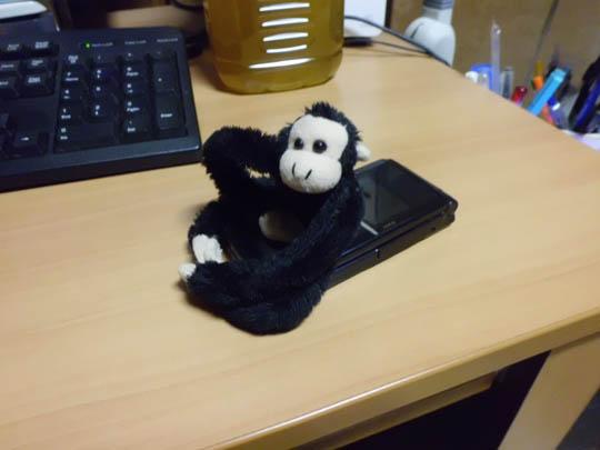 CASIO EX-ZS5で撮影した猿